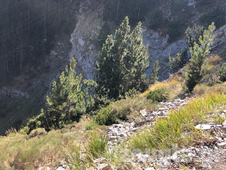 image%2814%29 - Η δραματική επιχείρηση διάσωσης του ορειβάτη γιατρού στον Όλυμπο (φωτο)