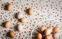 Πώς θα καταλάβετε αν τα αυγά είναι φρέσκα