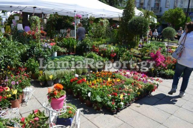 Και φέτος θα γεμίσει λουλούδια η πλατεία Πάρκου