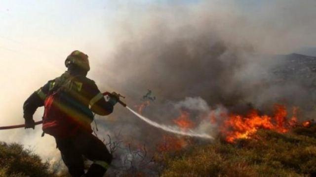 Φωτιά και στο Μαρτίνο Φθιώτιδας