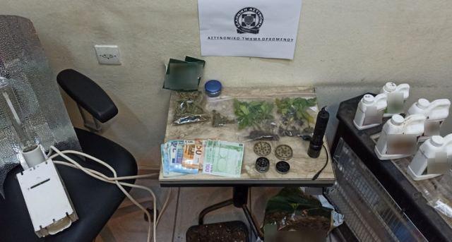 Σύλληψη 2 ατόμων στον Ορχομενό για καλλιέργεια κάνναβης
