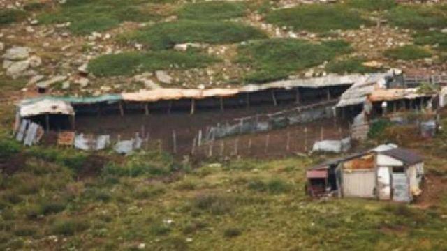 Λαμία: Ξήλωσαν ποιμνιοστάσιο κλέφτες μεταλλικών αντικειμένων