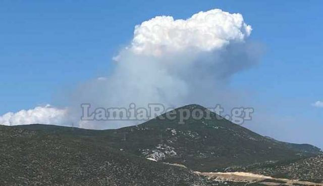 Μεγάλη πυρκαγιά στη Φθιώτιδα - Δόθηκε εντολή εκκένωσης για το Λογγίτσι
