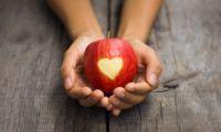 Τι να τρώτε για να «σπάσετε» την χοληστερόλη – Ποια είναι τα όρια χοληστερίνης
