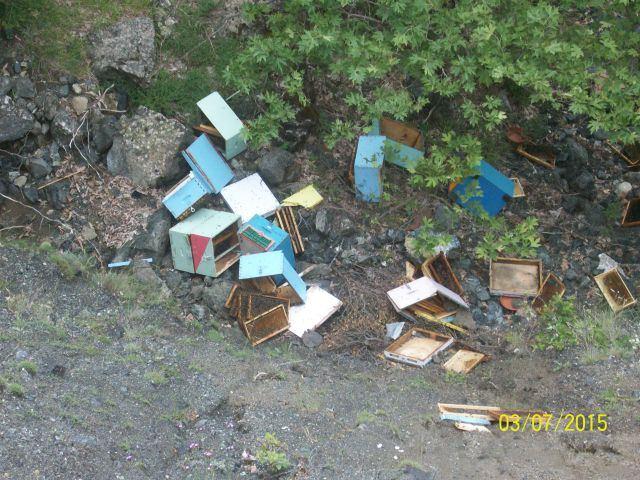 Οι δολοφόνοι μελισσιών ξαναχτύπησαν - Πέταξαν στον γκρεμό πάνω από 100 μελίσσια