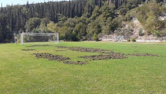 Αγριογούρουνα «όργωσαν» το γήπεδο της Ομβριακής