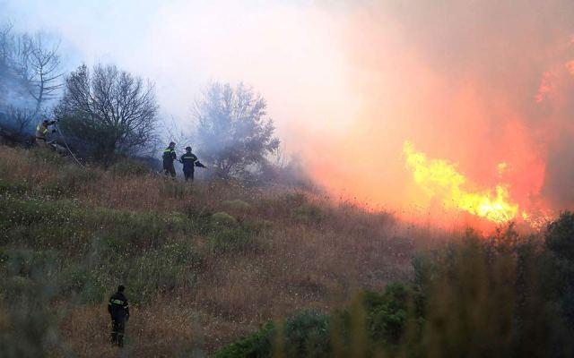 Πυρκαγιά από κεραυνό στον Εθνικό Δρυμό της Οίτης