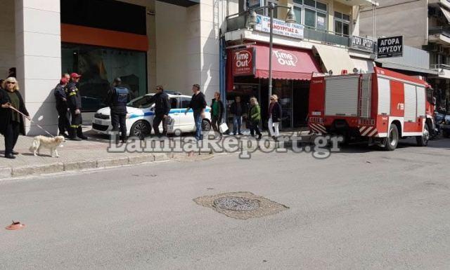 """Λαμία: """"Συνέλαβαν"""" επιθετικό αδέσποτο σκύλο στο κέντρο της πόλης (ΒΙΝΤΕΟ)"""
