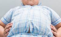 Παιδική παχυσαρκία: Δράμα και απογοήτευση για τα ελληνόπουλα…